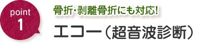 日本唯一の圧力波治療器 ショックマスター